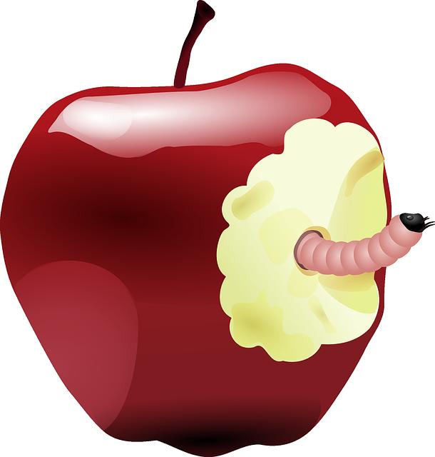 Črvivo jabolko zvestobe.